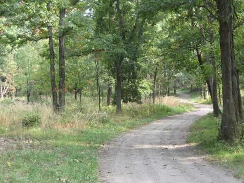 palos-woods