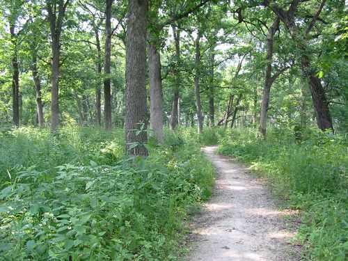 danada-trail