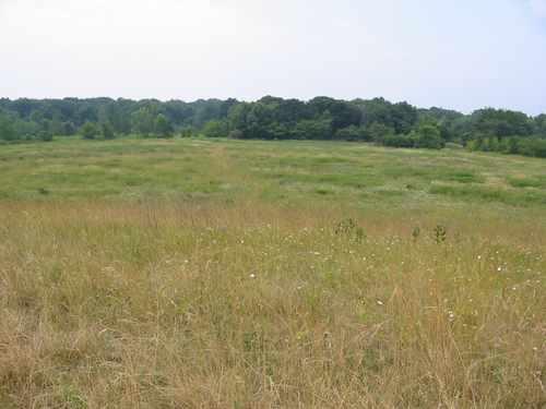 The park has big swaths of restored prairie.