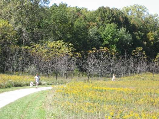 DesPlaines River Trail