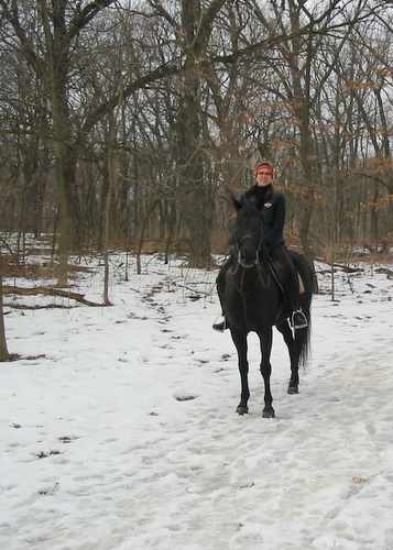 equestrian, Greene Valley Forest Preserve, DuPage County, trails, hiking