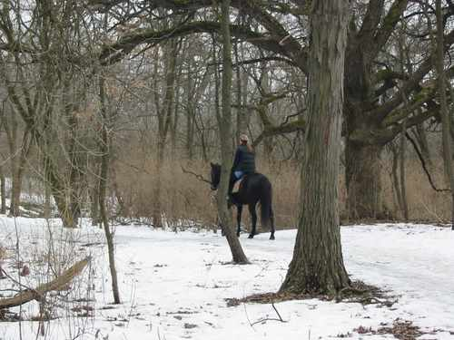 equestrian Greene Valley Forest Preserve