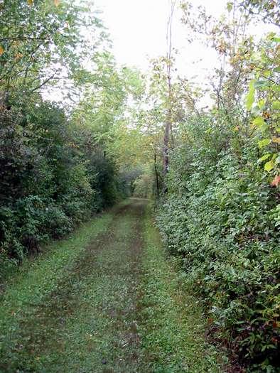 Marengo Ridge, hiking trail, McHenry County