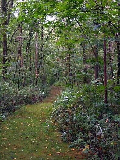 Marengo Ridge Conservation Area, hiking trail