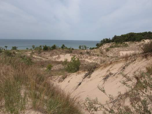 The trail passes through a topsy-turvy dune-scape on the way to the beach.