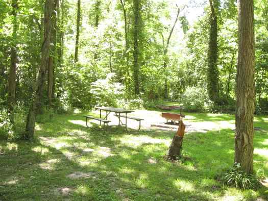 Dense woods surround this walk-in campsite at Sangchris Lake State park in central Illinois. 
