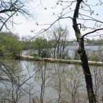 While hiking the bluffs at McKinley Woods, you'll catch views of the I&M Canal and the I&M Canal Trail.