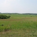 This ride takes you past the Nachusa Grasslands, the largest swath of tallgrass prairie in Illinois.